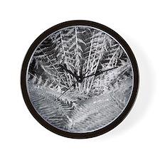 Silver Fern in the Otways Wall Clock