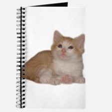 Cute Ginger kitten Journal
