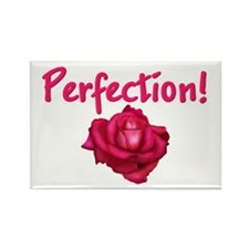 Perfectionist Mom Rectangle Magnet