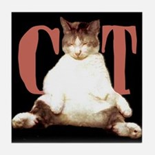 SLEEPY CAT Tile Coaster