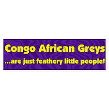Feathery People Congo African Grey Bumper Bumper Bumper Sticker
