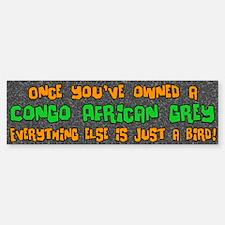 Just a Bird Congo African Grey Bumper Bumper Bumper Sticker