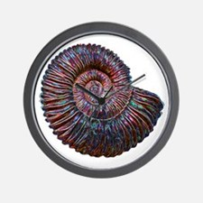 Ammonite Wall Clock