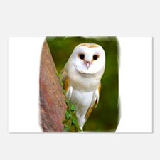 Funny Owl flight Postcards (Package of 8)