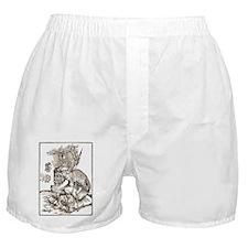 Vintage Hand Drawn Devil Boxer Shorts