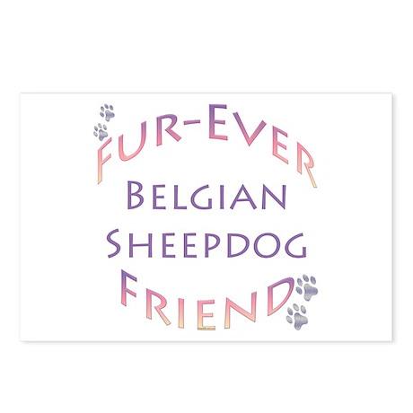 Belgian Sheep Furever Postcards (Package of 8)