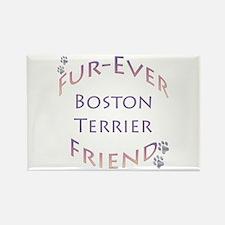 Boston Furever Rectangle Magnet