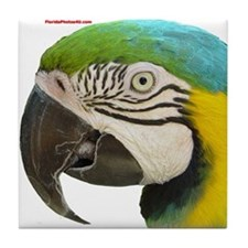 Funny Macaw Tile Coaster
