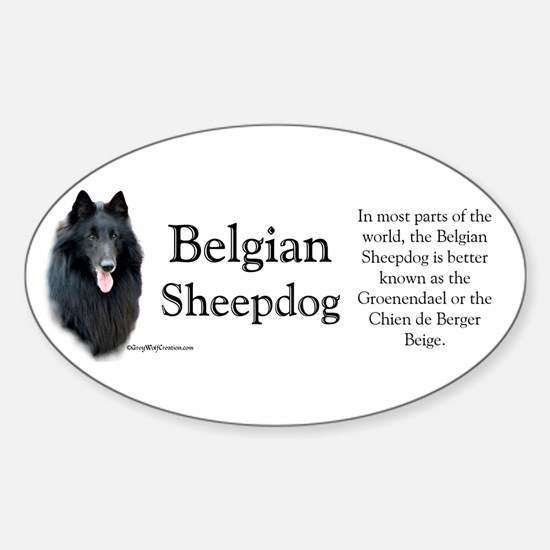 Belgian Sheep Profile Oval Decal