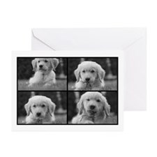 Golden Puppy Yard Work Greeting Cards (Package of