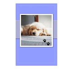 Sleeping Golden Puppy Postcards (Package of 8)