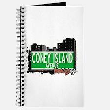 CONEY ISLAND AVENUE, BROOKLYN, NYC Journal