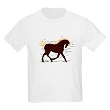 Rocky Mountain Horse Anatomy T-Shirt