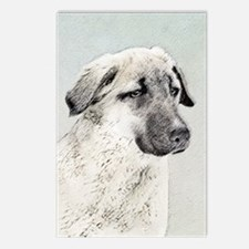 Anatolian Shepherd Postcards (Package of 8)
