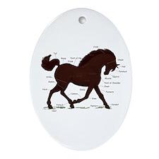 Dark Brown Horse Anatomy Chart Oval Ornament