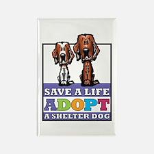 Adopt an Irish Setter Rectangle Magnet (10 pack)