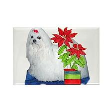 Maltese Christmas Rectangle Magnet (10 pack)