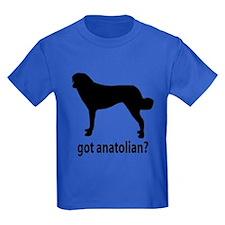 Got Anatolian? T