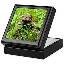 Mr. Toad Keepsake Box