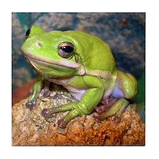 Green treefrog Tile Coaster