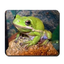 Green treefrog Mousepad