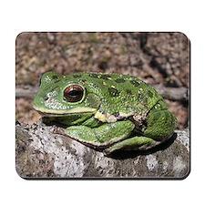 Barking treefrog Mousepad