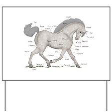 Gray Horse Anatomy Chart Yard Sign