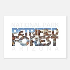 Petrified Forest - Arizon Postcards (Package of 8)