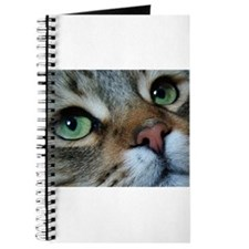 KASHMIR: Journal