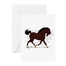 Dark Brown Pony Socks Anatomy Greeting Cards (Pk o