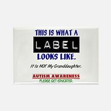 Label 1 Autism (Granddaughter) Rectangle Magnet