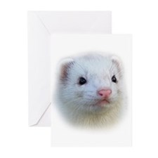 Ferret Face Greeting Cards (Pk of 10)
