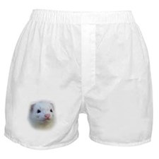 Ferret Face Boxer Shorts