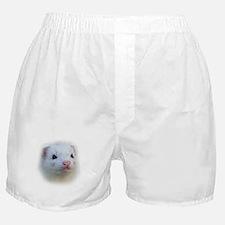 Ferret Face Boxer Shorts
