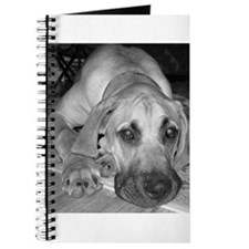 Unique Great danes Journal
