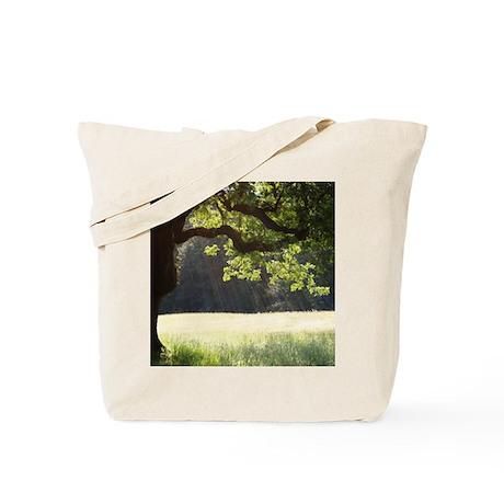 Sunny Oak Tote Bag