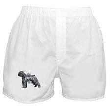 bouvier rules Boxer Shorts