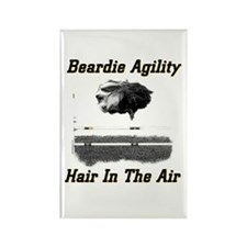 Beardie Agility-Hair in the Air Rectangle Magnet