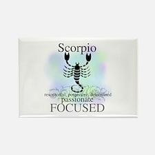 Scorpio the Scorpion Rectangle Magnet