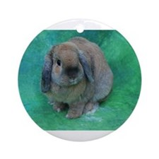 Cute Brown bunny Ornament (Round)