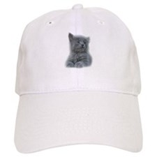 Grey Kitten Baseball Cap