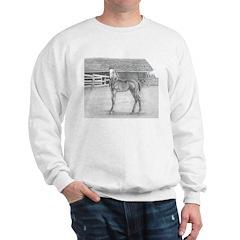 Fancy Foal Sweatshirt