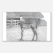 Fancy Foal Rectangle Decal