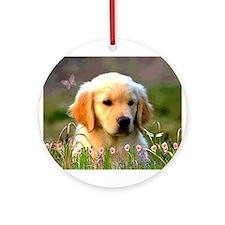 Austin, Retriever Puppy Ornament (Round)