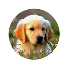 """Austin, Retriever Puppy 3.5"""" Button"""