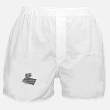 Scrapbookers Remember Beautif Boxer Shorts