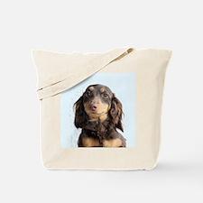Long Hair Doxie Tote Bag