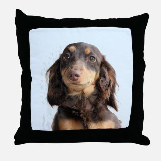 Long Hair Doxie Throw Pillow