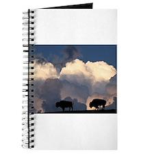Bison Island Journal