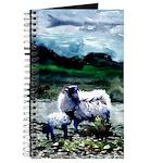 Sheep, Connemarra, Journal
